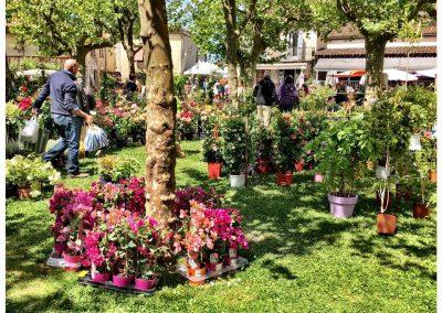 Fourcès Flower Market, Gers