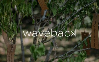 …Somebody Might Waveback